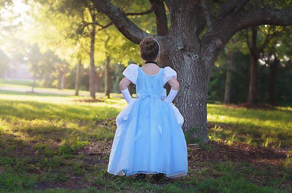 6817ed554d64 Cinderella Dress   Disney Princess Dress Inspired Costume Ball Gown ...