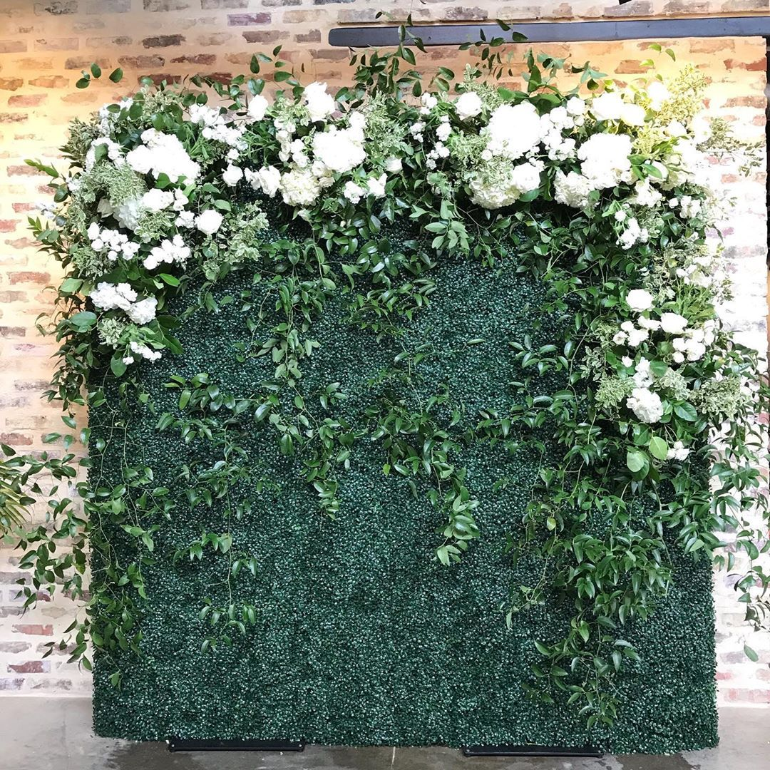 Flower Shack Blooms On Instagram Today S Boxwood Backdrop At Park31venue Was You Know Boxwood Backdrop Flower Wall Wedding Flower Backdrop Wedding