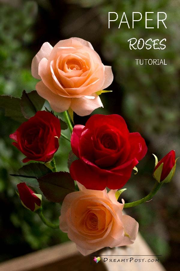 How to make tissue paper rose, free template, step by step