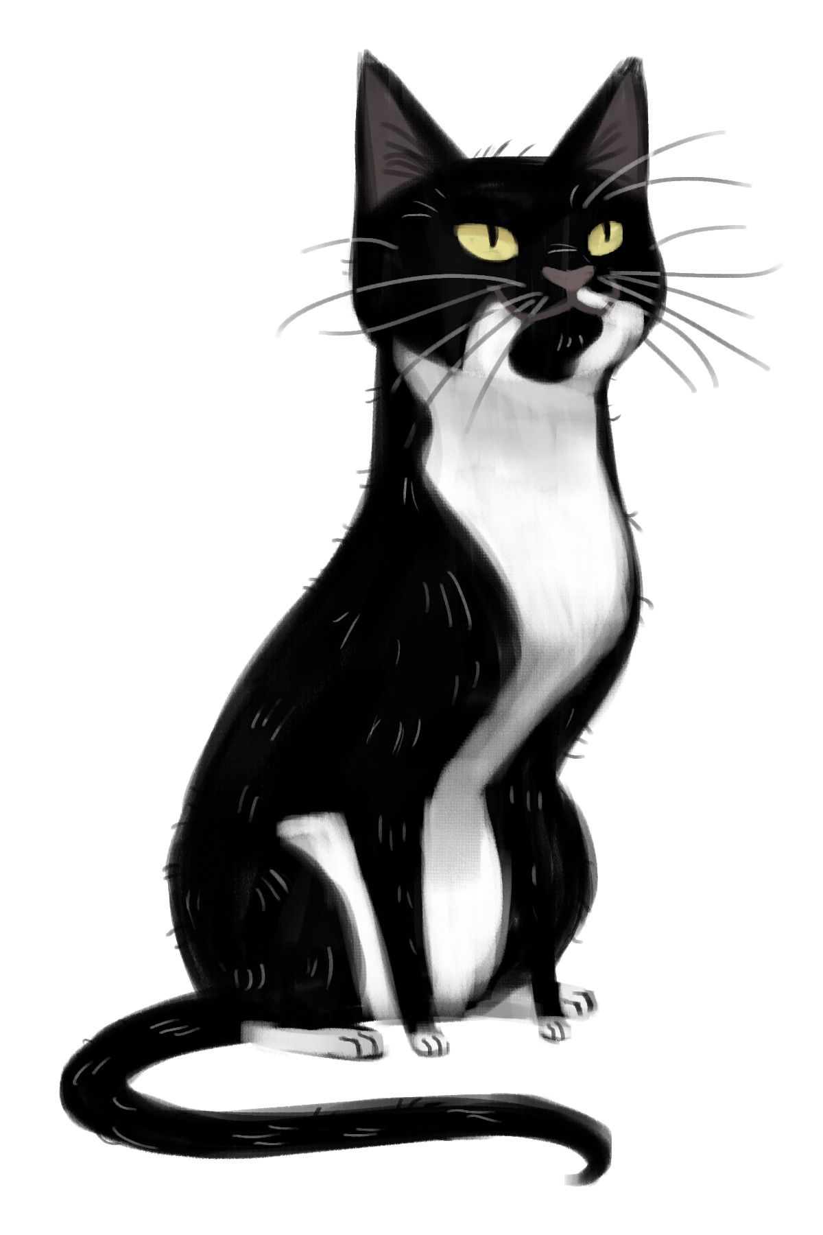 первоклашке рисунки кошек черно белые железное
