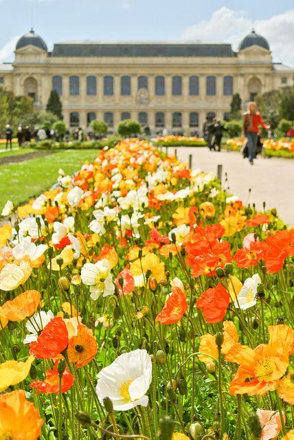 Au Jardin des Plantes, Paris