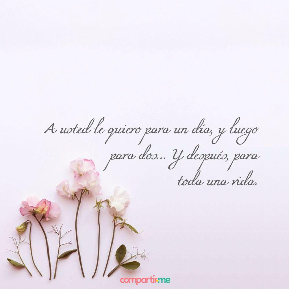 Frases Románticas Con Imágenes De Flores Perfectas Para