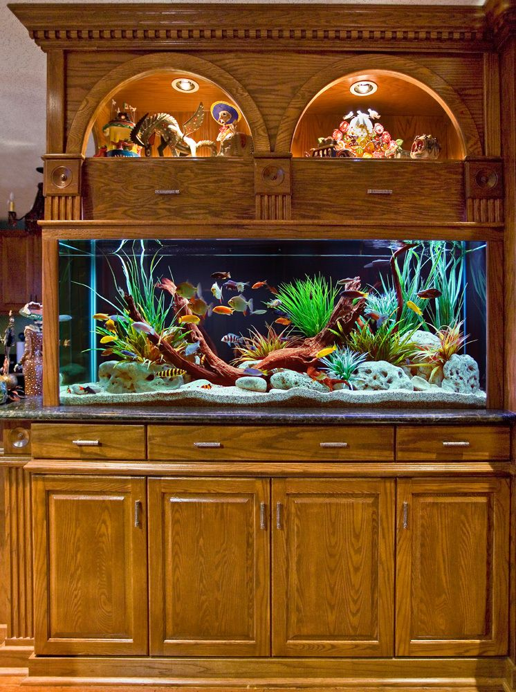 Custom Built-In Aquarium And