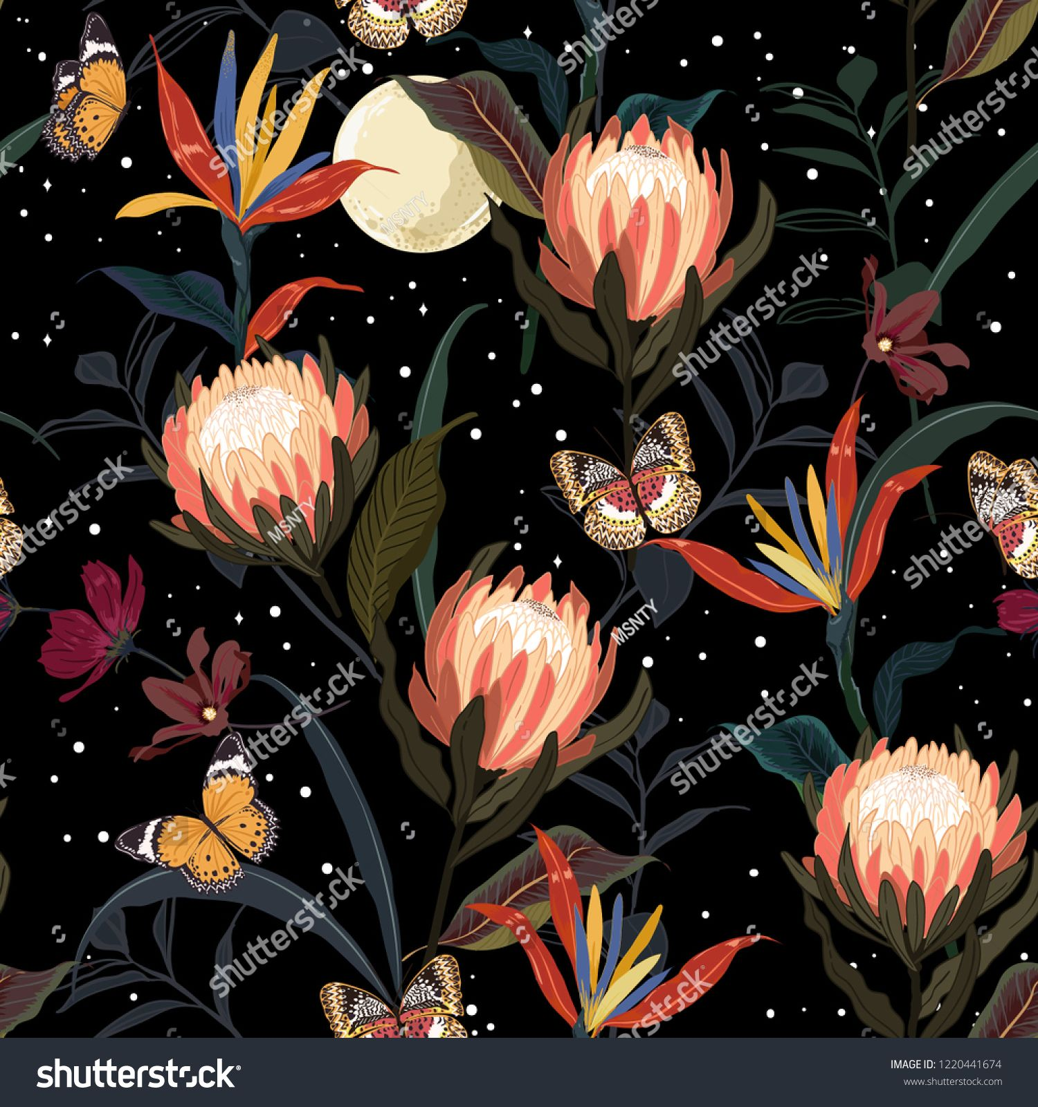 Beautiful Protea Flowers And Botanical Garden Night With Moon Shine And Stars Butterflies Seamless Patte Texture Art Seamless Patterns Seamless Pattern Vector