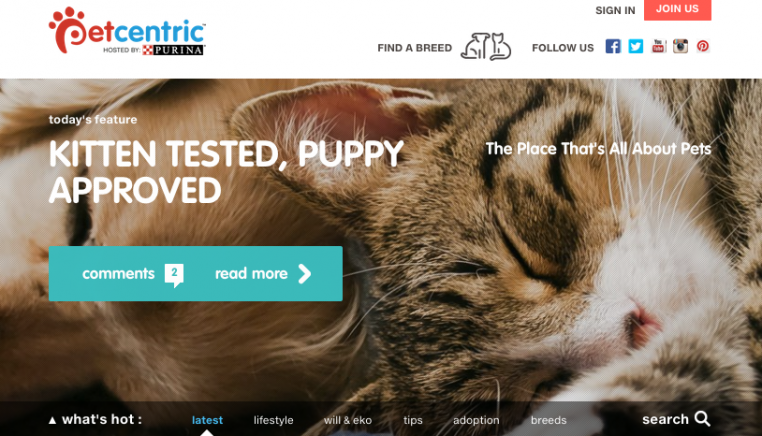 Purina's Petcentric focuses on animal wellness plus cute cats & dogs