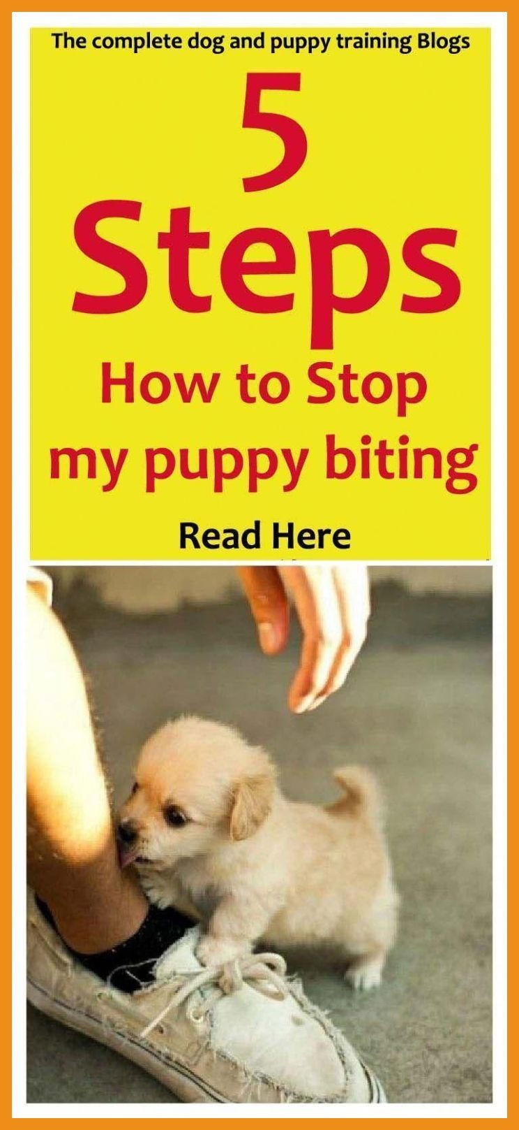 How To Make A Puppy Stop Biting Puppy Biting Training Tips Stop Puppy From Biting How T Dog Training Obedience Puppy Biting Easiest Dogs To Train