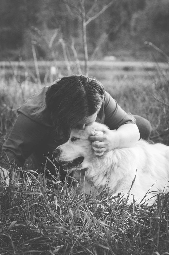 Terminally Ill Dogs And Their Owners Get Free Professional Photos They Re Absolutely Stunning Pictures Pets Photos With Dog