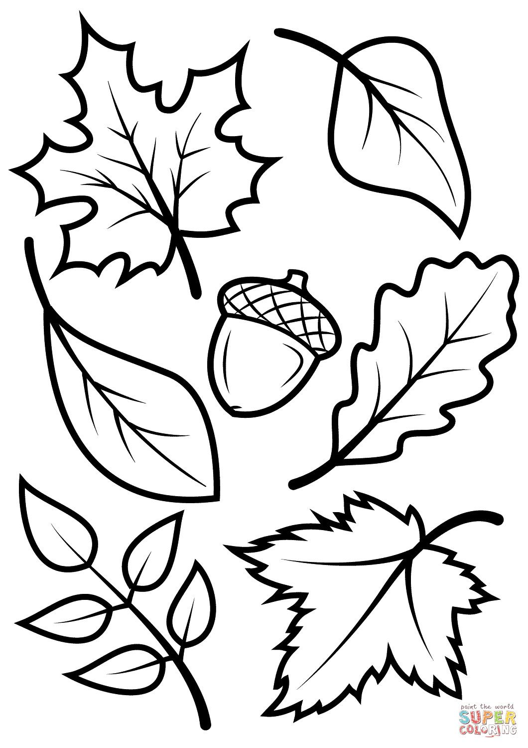 New leaf pictures to color fall leaves and acorn coloring page free
