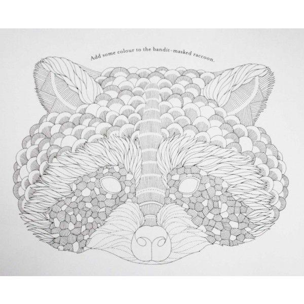 millie marotta 39 s animal kingdom colouring book owls red panda birdcages lady bug. Black Bedroom Furniture Sets. Home Design Ideas