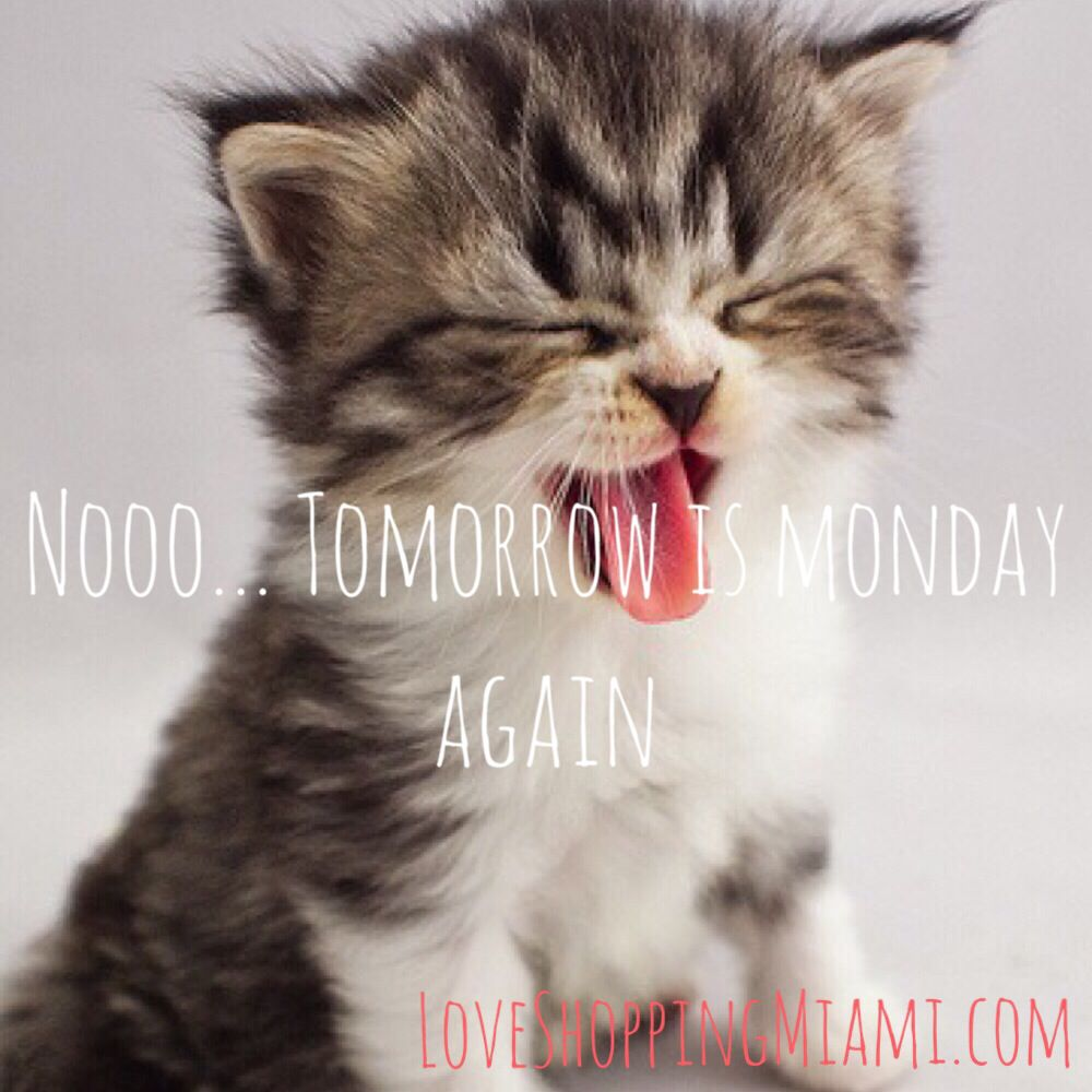 Noooo Tomorrow is Monday again monday quotes