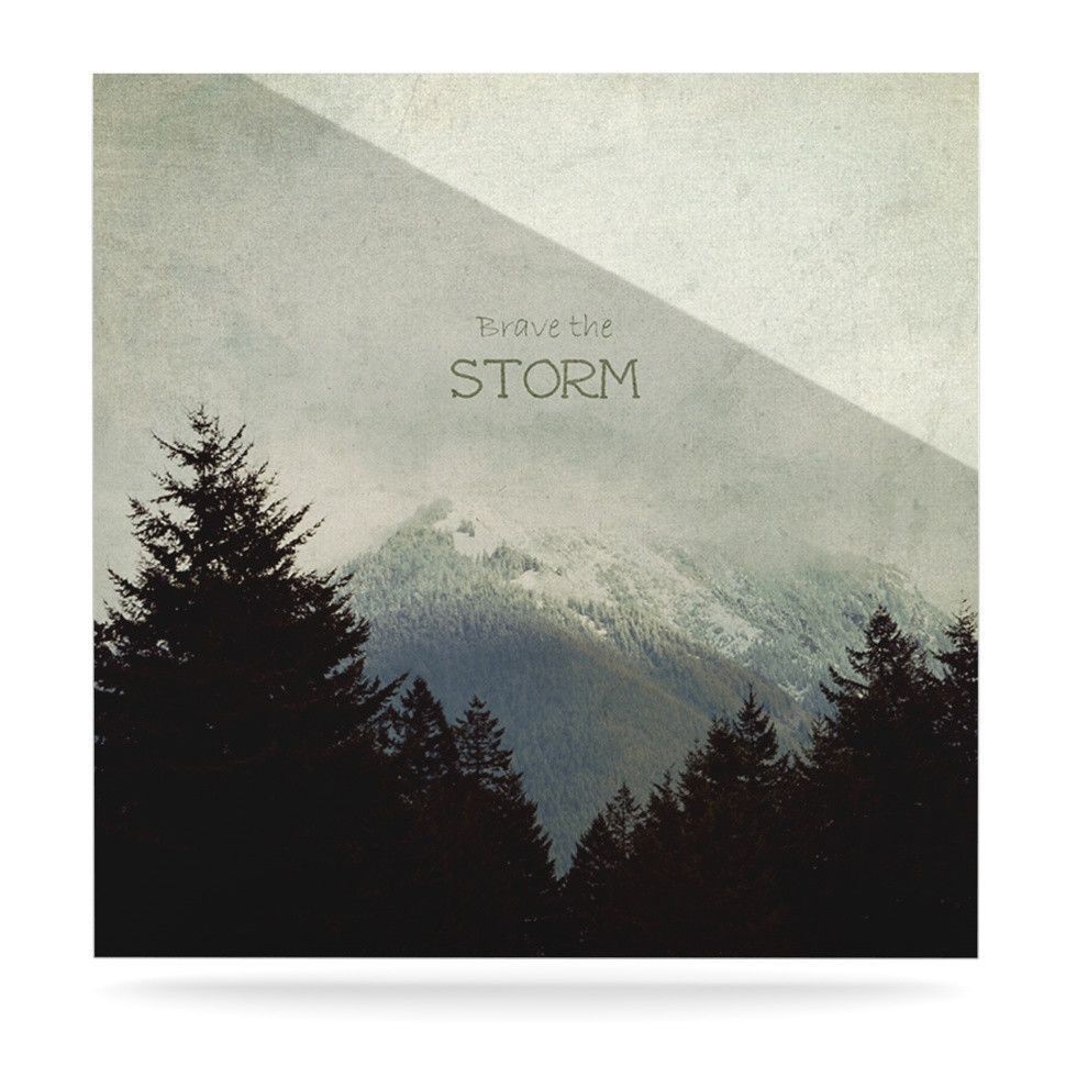 """Robin Dickinson """"Brave The Storm"""" Snow Mountain Luxe Square Panel"""