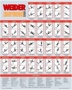 Weider total bodyworks exercise chart google search gym workout also pdf pinterest rh