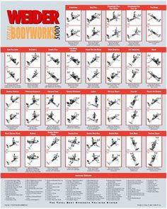Weider total bodyworks exercise chart google search also gym rh pinterest