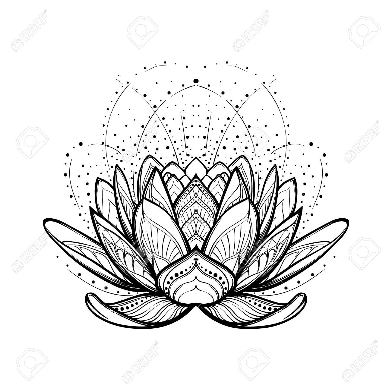 Lotus Flower Intricate Stylized Linear Drawing Isolated On White Lotus Flower Drawing Lotus Flower Tattoo Design Lotus Flower Art