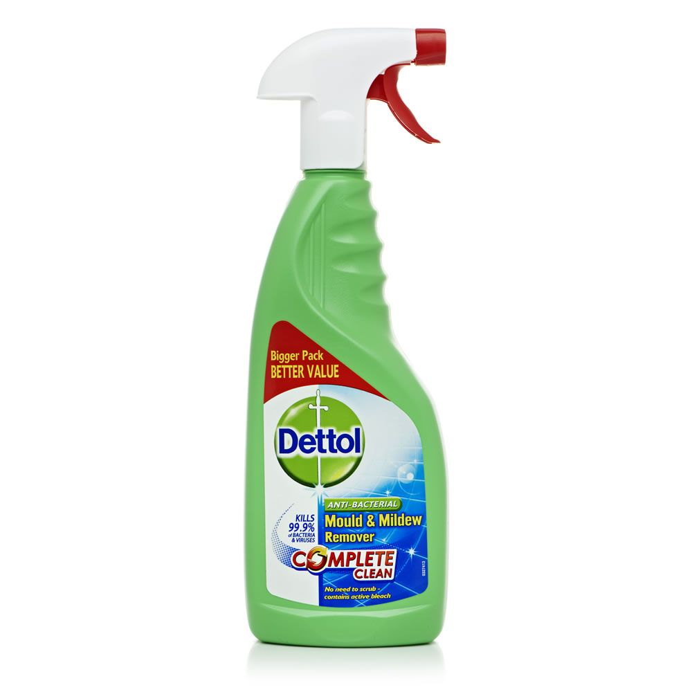 Dettol Mould And Mildew 750ml Casa Fofa Fofa