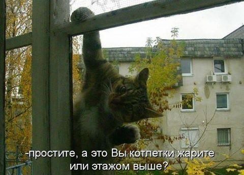 Я к вам...
