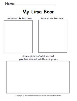 lima bean worksheet kindergarten lima best free printable worksheets. Black Bedroom Furniture Sets. Home Design Ideas