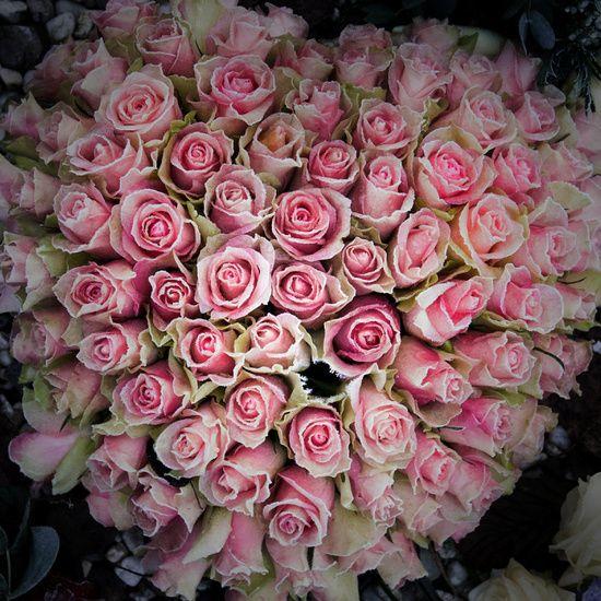roze vans met rozen