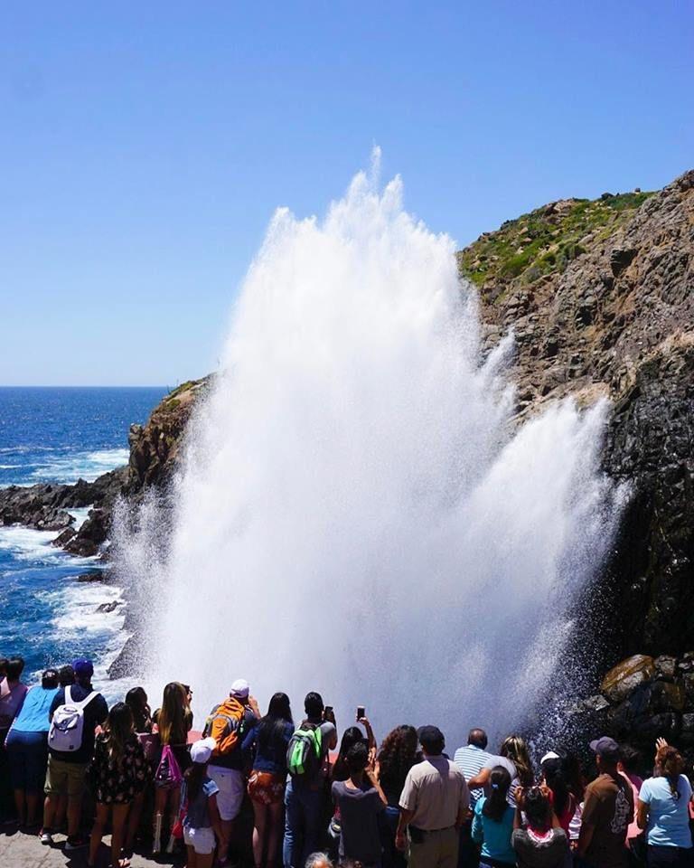 La Bufadora, es un Geiser, provocado por el rompimiento de las olas contra una cueva que se encuentra en la parte baja del acantilado, alcanzando en ocasiones sorprendentes alturas de más de 20 metros #Ensenada #MiAlmaGemela #BajaCalifornia #DiscoverBaja #DescubreBC #EnjoyBaja #DisfrutaBC #LaBufadora #Summer #Verano #México #BajaMexico #Baja Inicia tu aventura visitando: www.descubreensenada.mx  Aventura por jstn.sd
