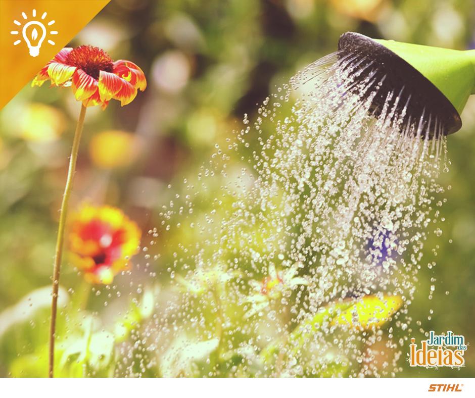 O outono é uma época em que precisamos redobrar os cuidados com a rega das nossas plantinhas. Elas devem ser moderadas e somente quando o solo estiver seco. Fique atento!