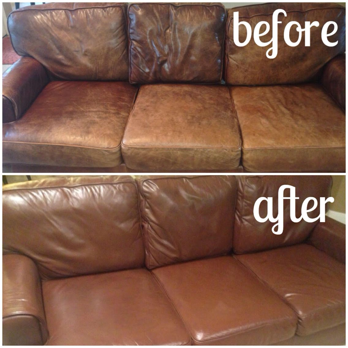 restoring leather sofa pottery barn slipcover charleston old review home co