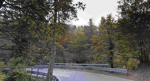 Provincia di Reggio Emilia: Carpineti domattina riapre il ponte sul rio Lamburana
