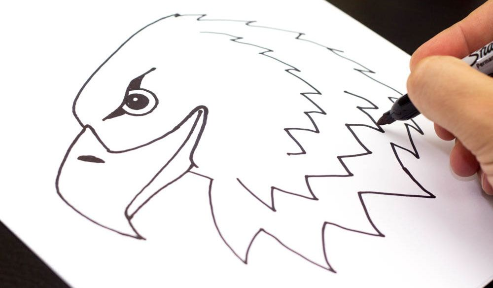 How to draw a realistic bald eagle head art for kids hub for Easy but good things to draw