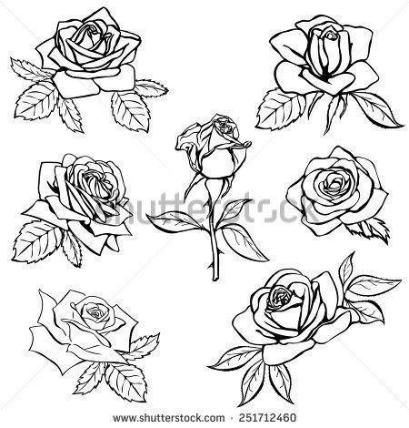 Rose Vine Tattoos Outline | Rose sketch, Rose outline tattoo, Rose outline