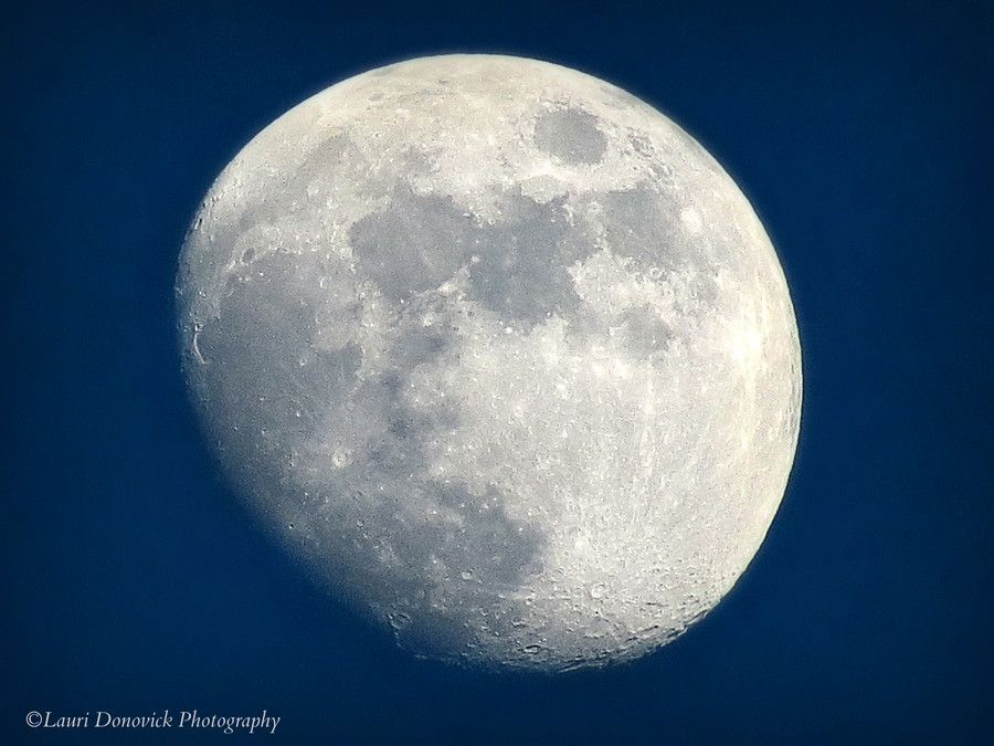 Friday the 13th Moon by Lauri Donovick on 500px   Friday ...