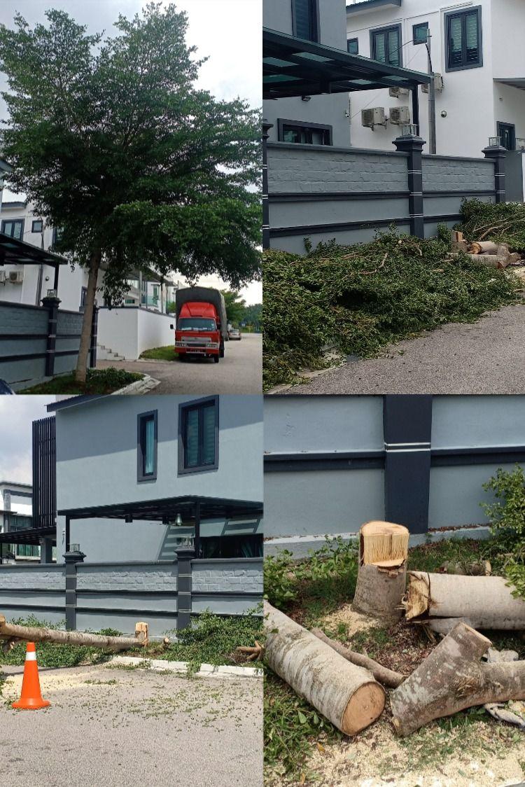 Pin On Tree Cutting Services 016 8997985 Johor Bahru