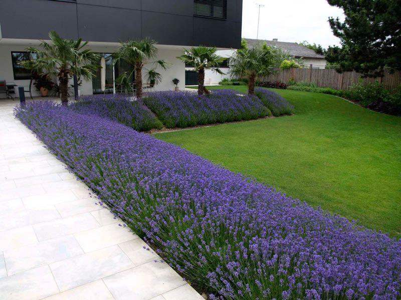 Atrium in rot und violett Gartengestaltung, Gartenplanung - gartenplanung selbst gemacht