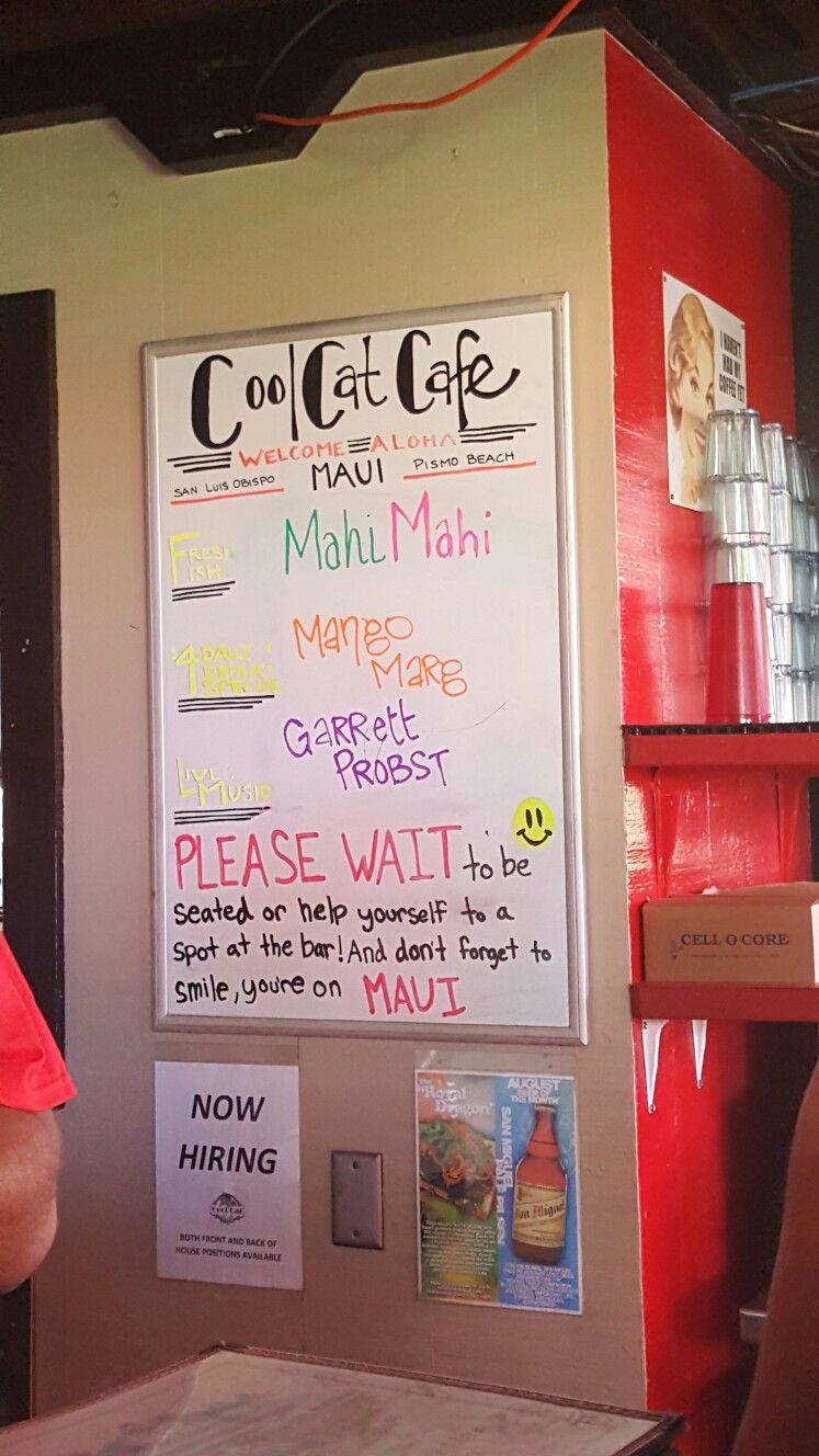 Cool Cat Cafe, Lahaina, Maui. Cat cafe, Maui, Lahaina