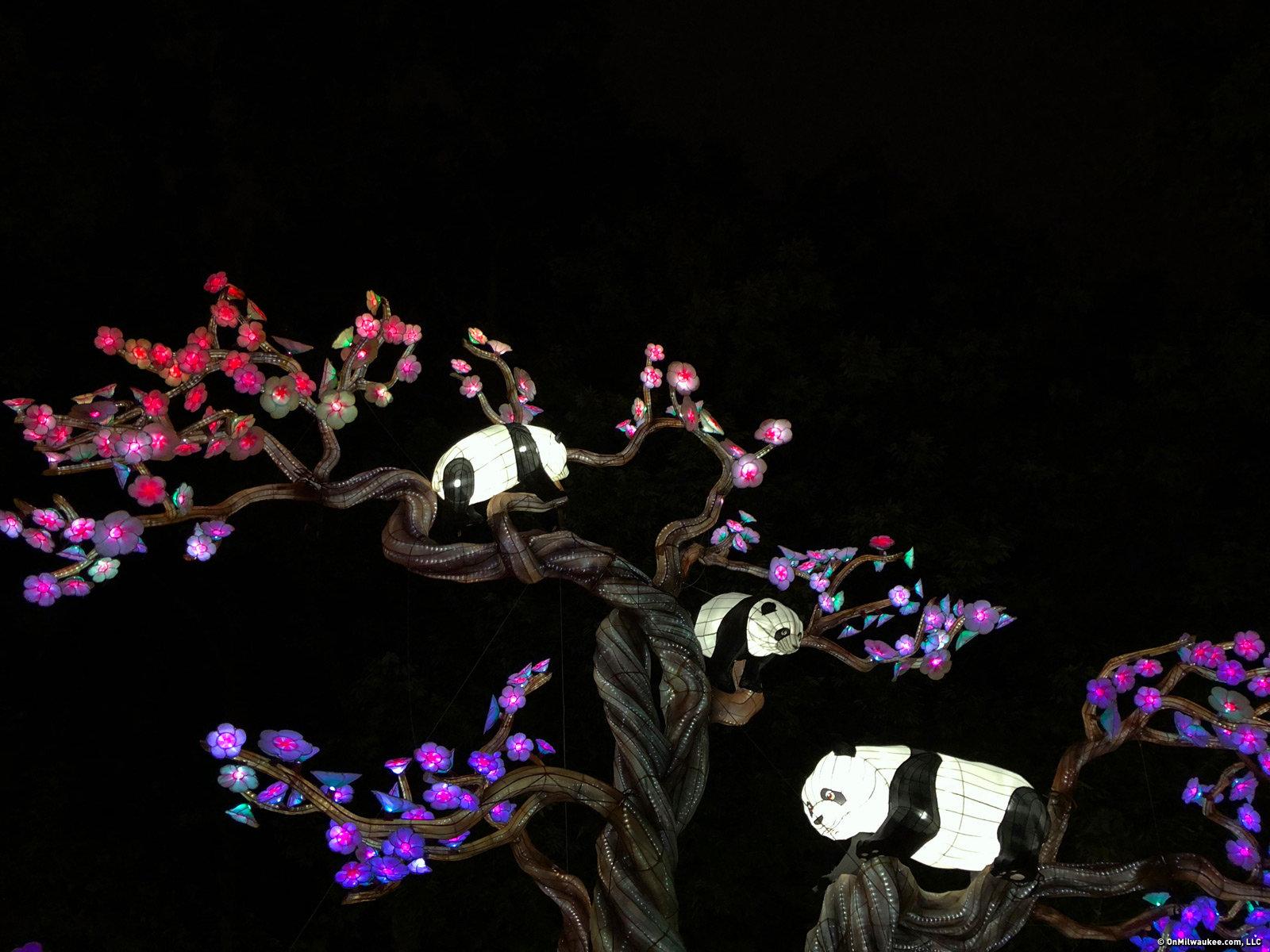 b104bf708cd338a9e5ba00c5a46b1c61 - China Lights Boerner Botanical Gardens Tickets