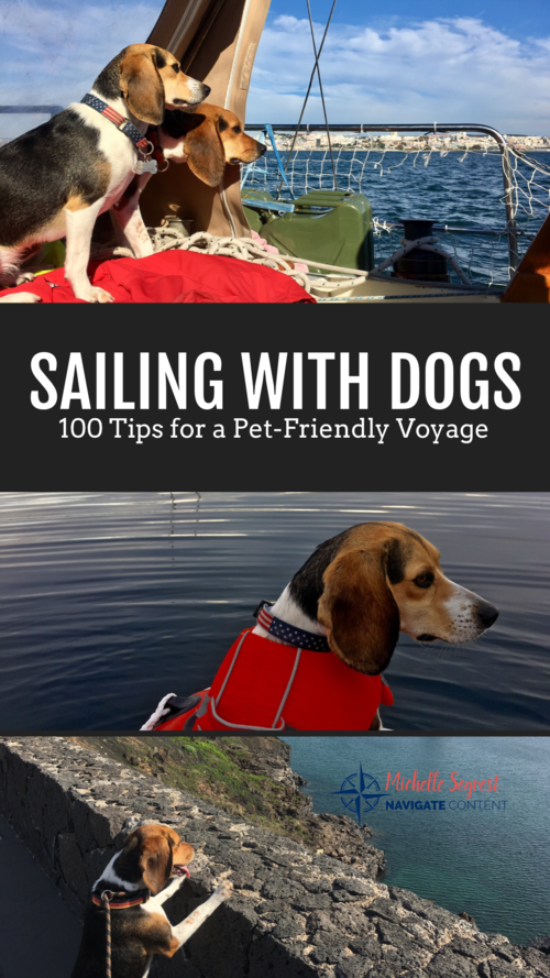 Pets On Board Sailing With Dogs Navigate Content In 2020 Dog