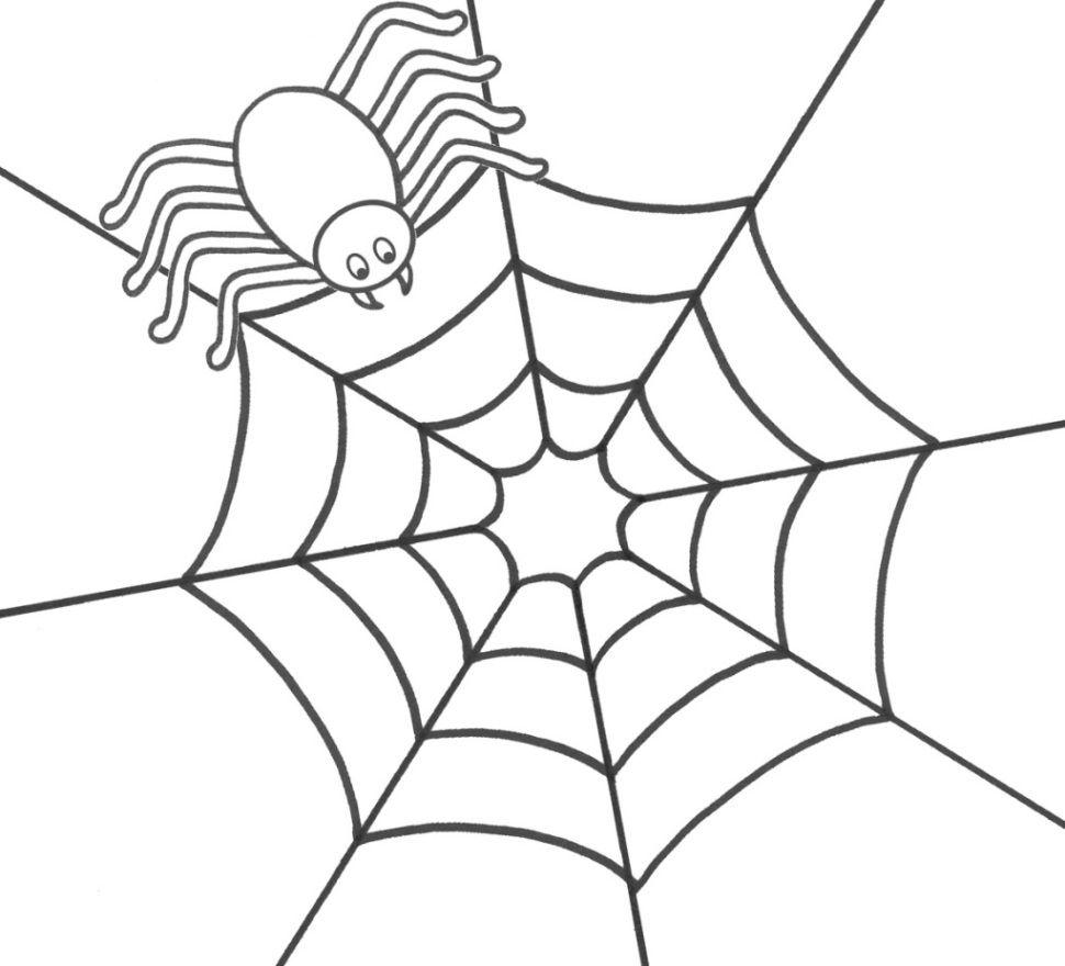 Spinne ausmalbild - Ausmalbilder für kinder Spinnennetz