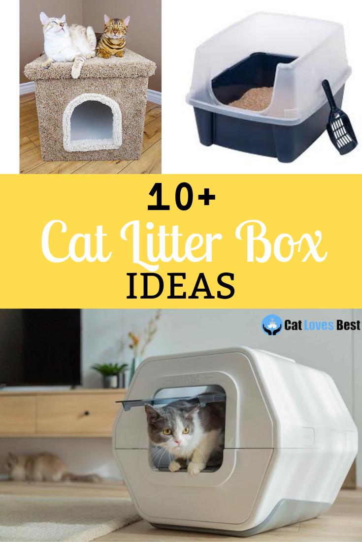 10 Cat Litter Box Ideas 2021 Collection Of Cat Litter In 2021 Cat Litter Best Cat Litter Cat Litter Box