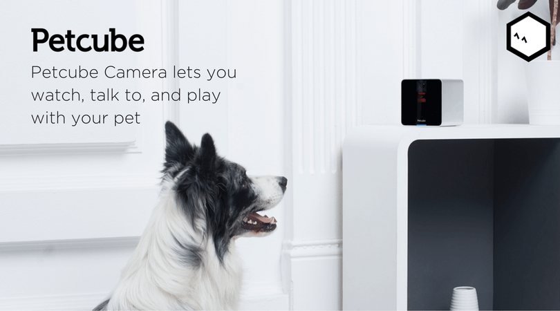 Petcube Camera Is The First Product That Allows Pet Owners
