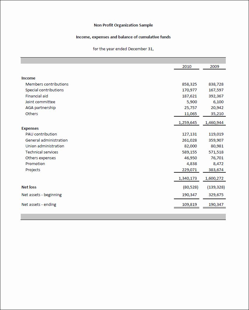 Non Profit Financial Statement Template Elegant Non Profit