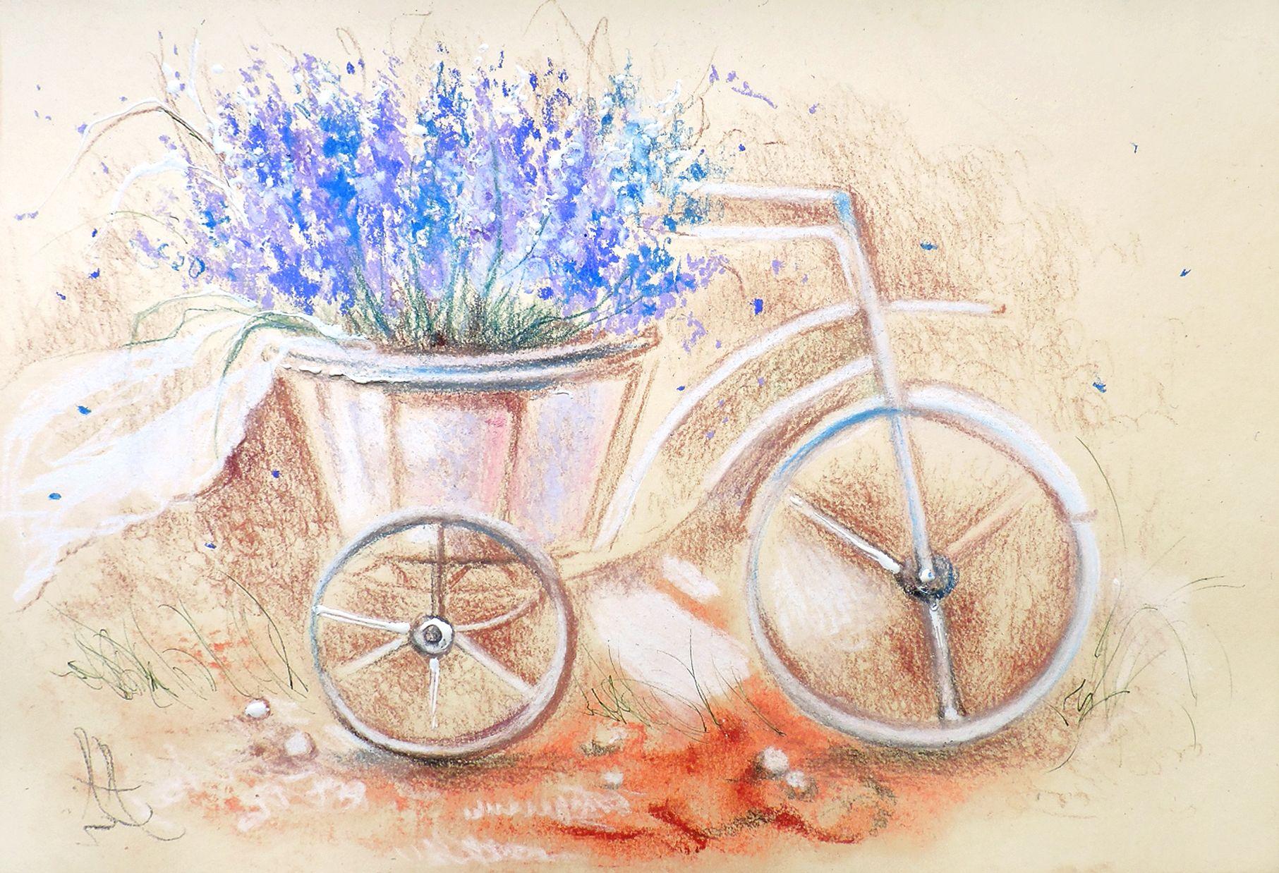 Открытка прованс с велосипедом, природа любовь