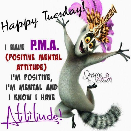3cc3717f24a8fa4448b77c10f77a7fe5 Jpg 550 550 Morning Quotes Funny Happy Tuesday Quotes Tuesday Quotes Funny