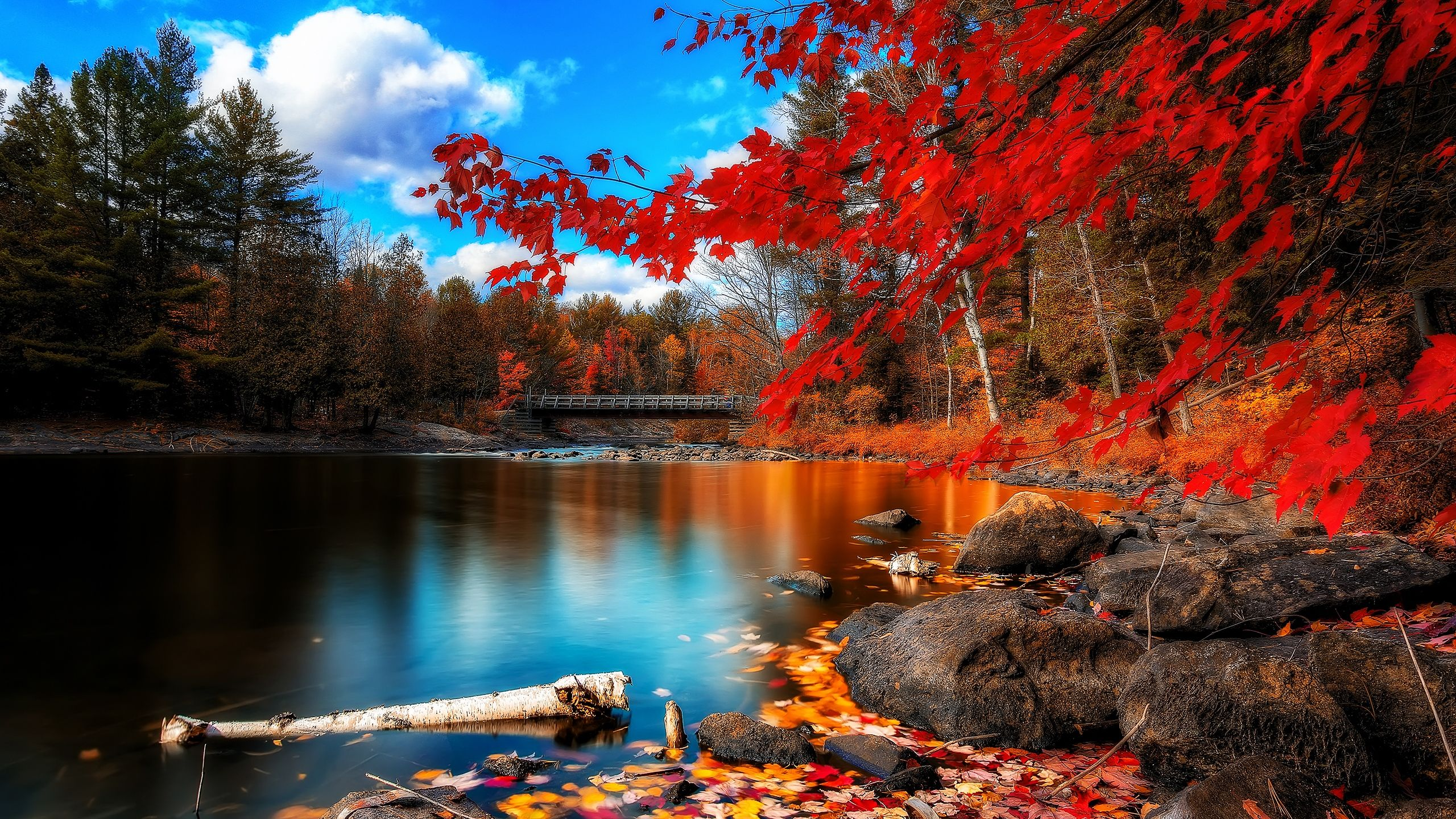 The Best Time Of The Year Beautiful Nature Scenery Wallpaper Beautiful Landscapes