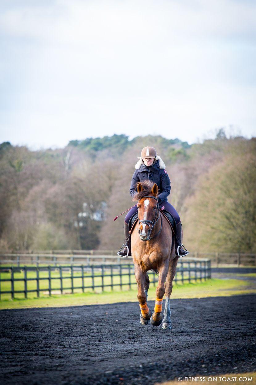 The Benefits Of Horse Riding Horses Horse Riding Burn
