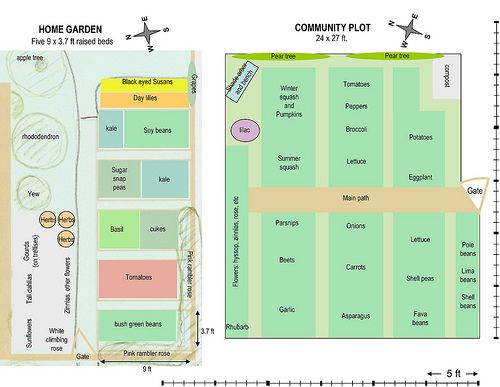Small garden plot designs microsoft powerpoint for Veggie patch layout