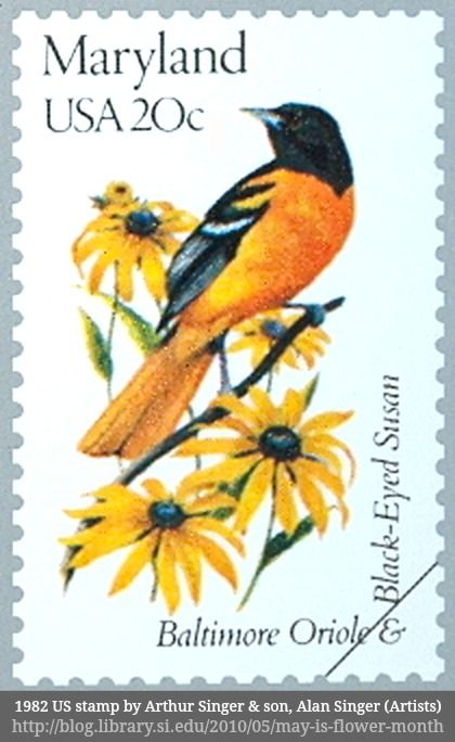 1982 Baltimore Oriole Black Eyed Susan Us Stamp By Arthur Singer Son Alan Artists Via The Smithsonian Digital Library Blog