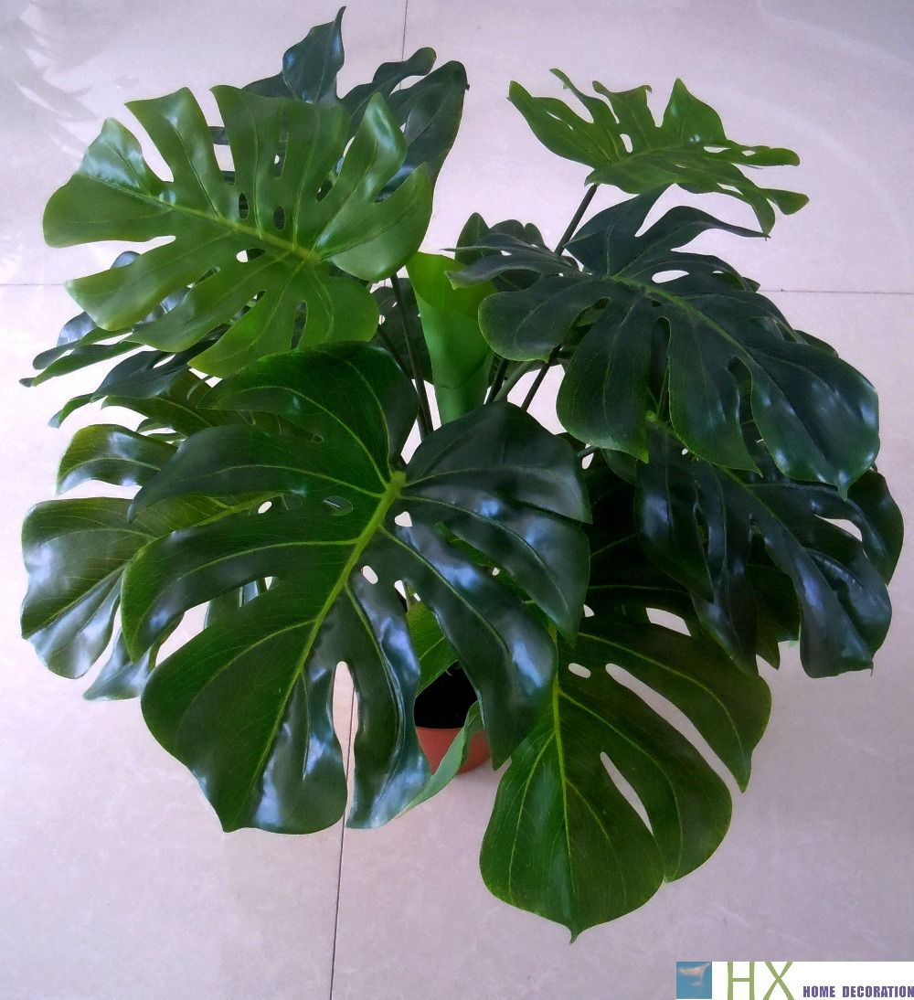 Free shipping(13 leaves/pcs)Turtle leaves plants, Artificial tree ...