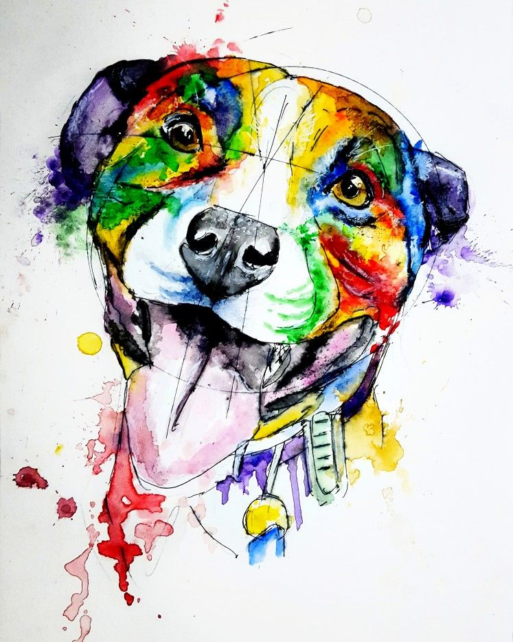 Splatter Dog Watercolour Watercolor Dog Art Inspiration Moose Art