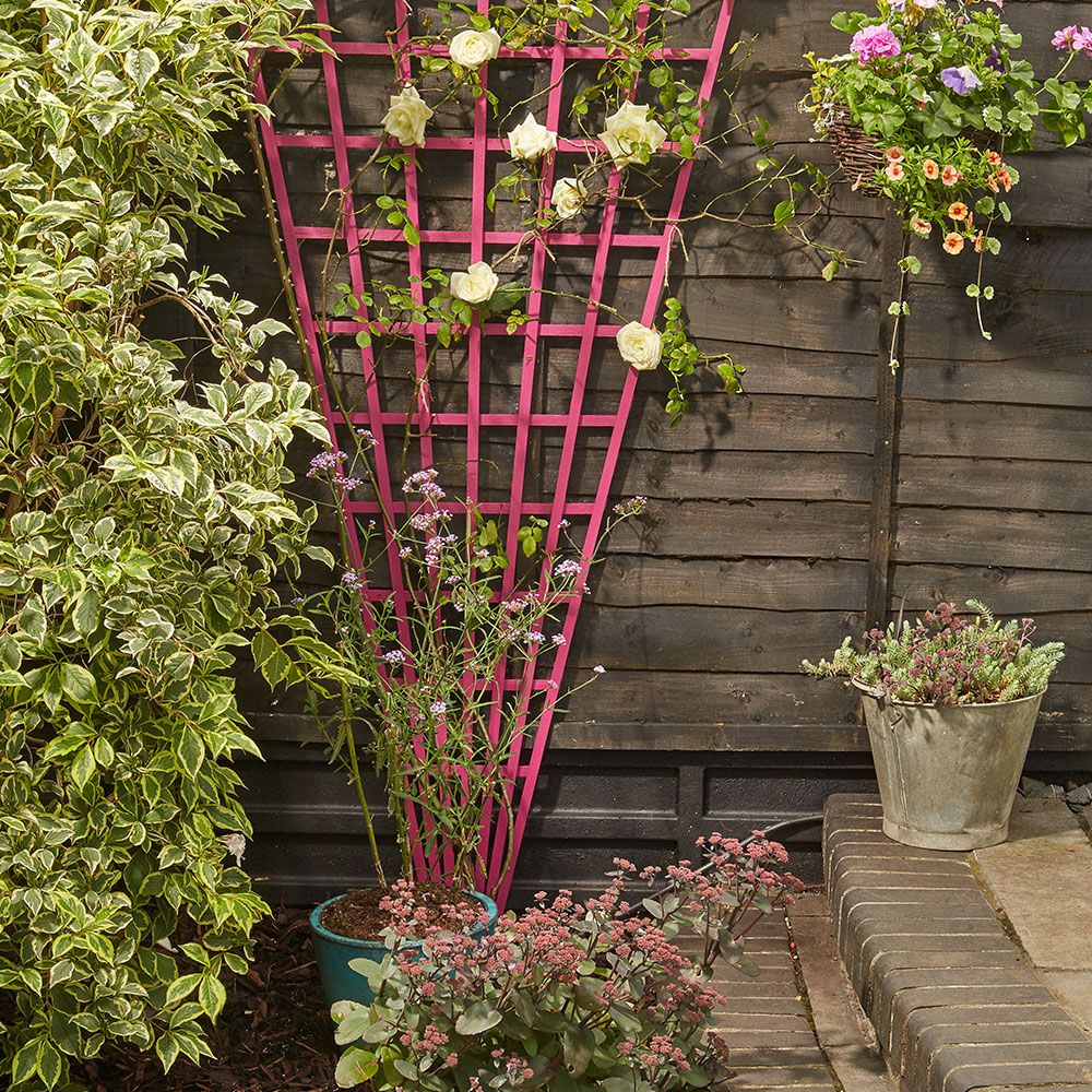 Small garden ideas to make the most of a tiny space (House to Home ...