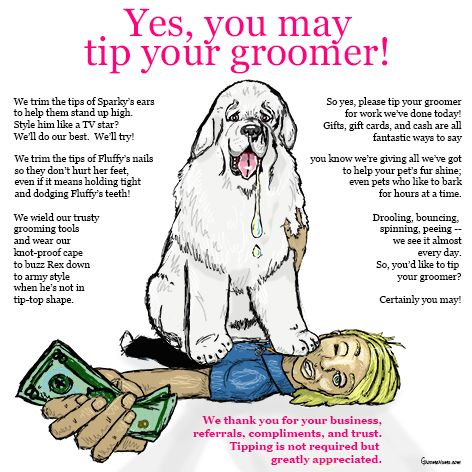 Yes You May Tip Your Groomer Poem Comic Encourage Clients To Reward You For All Your Hard Work Dog Grooming Salons Dog Grooming Shop Pet Grooming Salon