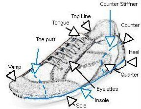 There Many Different Shoe Components In A Shoe Major Shoe