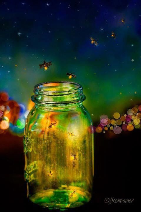 Fire Flies In 2020 Catching Fireflies Fireflies In A Jar Jar